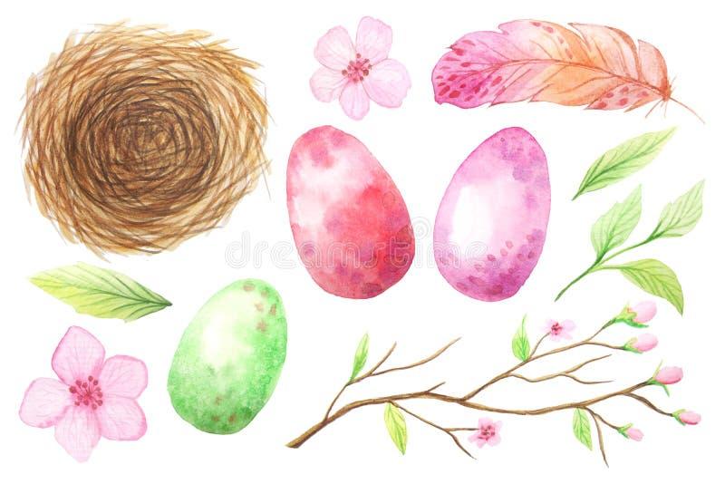 Grupo de ovo e de penas coloridos da aquarela ilustração do vetor