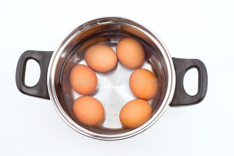 Grupo de ovos imergidos na água imagem de stock royalty free