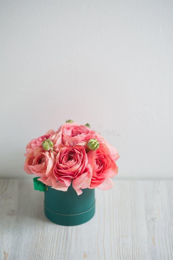 Grupo de pálido - fundo persa da luz do botão de ouro do ranúnculo cor-de-rosa, superfície de madeira Caixa verde foto de stock royalty free