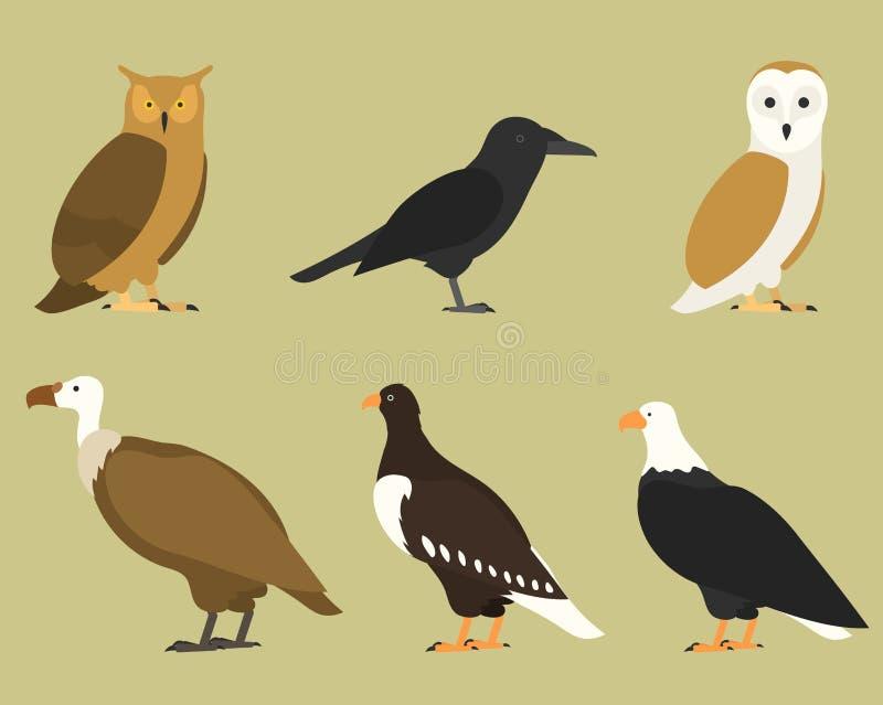 Grupo de pássaros lisos, isolado no fundo pássaros tropicais e domésticos diferentes, pássaros simples do estilo dos desenhos ani ilustração do vetor