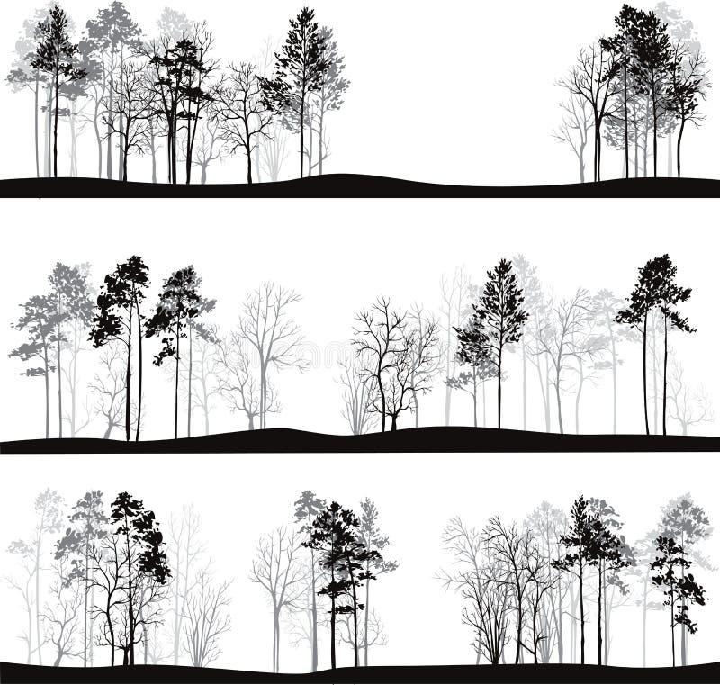Grupo de paisagens diferentes com pinheiros ilustração do vetor
