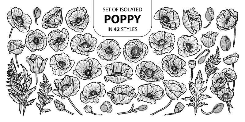Grupo de papoila isolada em 42 estilos Mão bonito ilustração tirada do vetor no plano preto do esboço e o branco ilustração stock