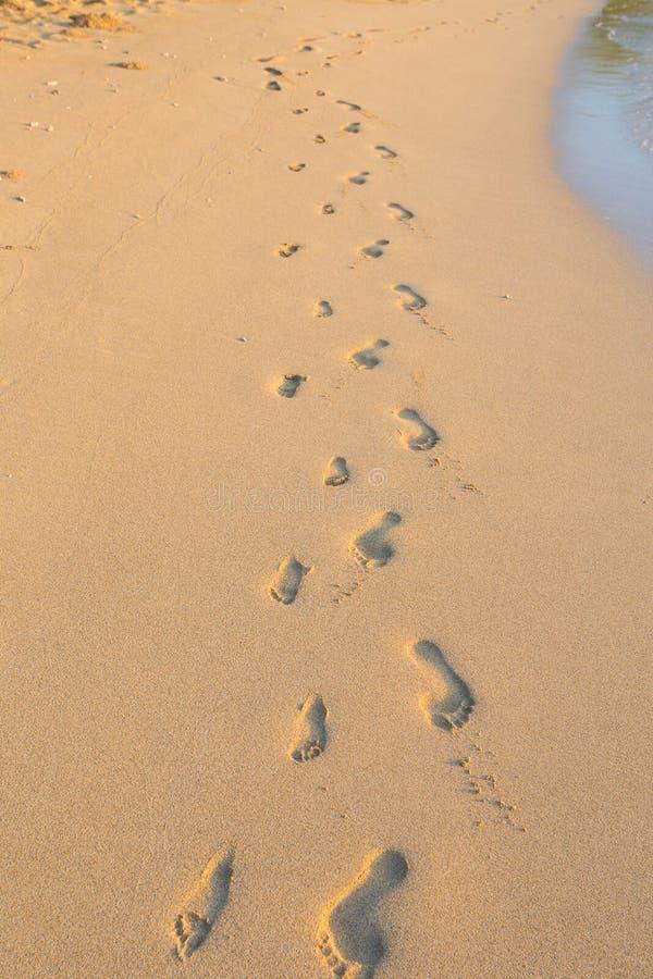 Grupo de pegadas na areia na praia de Havaí fotografia de stock