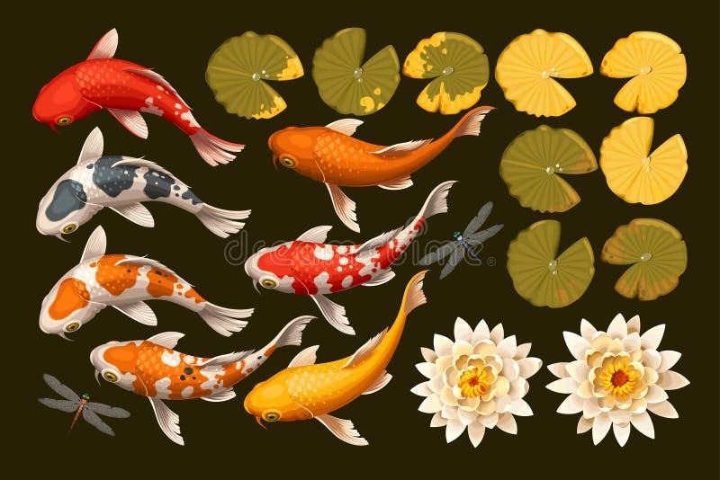 Grupo de peixes e de lótus do koi ilustração stock