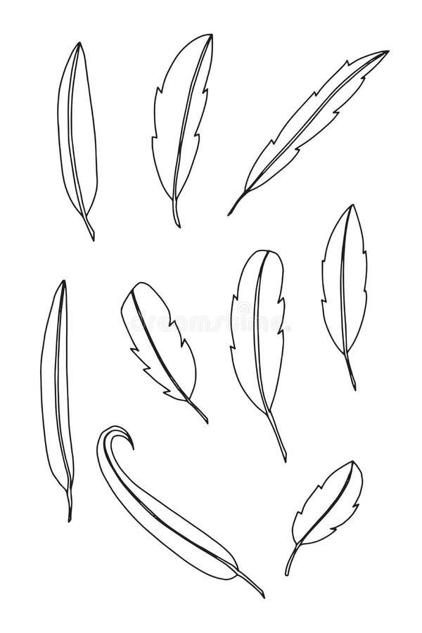 Grupo de pena no fundo branco Ilustração do vetor ilustração royalty free
