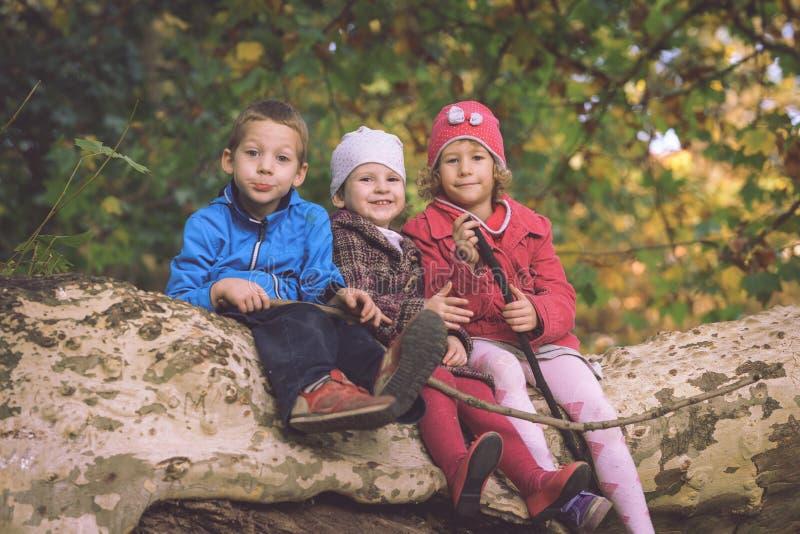 Grupo de pequeños niños caucásicos que se sientan en árbol del otoño imagenes de archivo