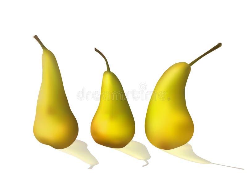 Grupo de peras amarelas brilhantes ilustração stock