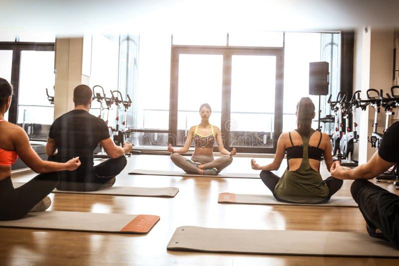 Grupo de pessoas no treinamento da ioga fotos de stock