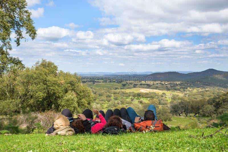 Grupo de pessoas que encontra-se para baixo olhando para o prado na máscara de um carvalho em um dia de mola bonito foto de stock royalty free