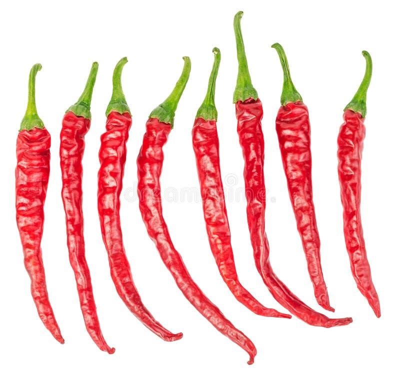 Grupo de pimentas de pimentão vermelho quentes isoladas foto de stock