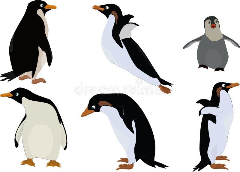 Grupo de pinguins ilustração royalty free