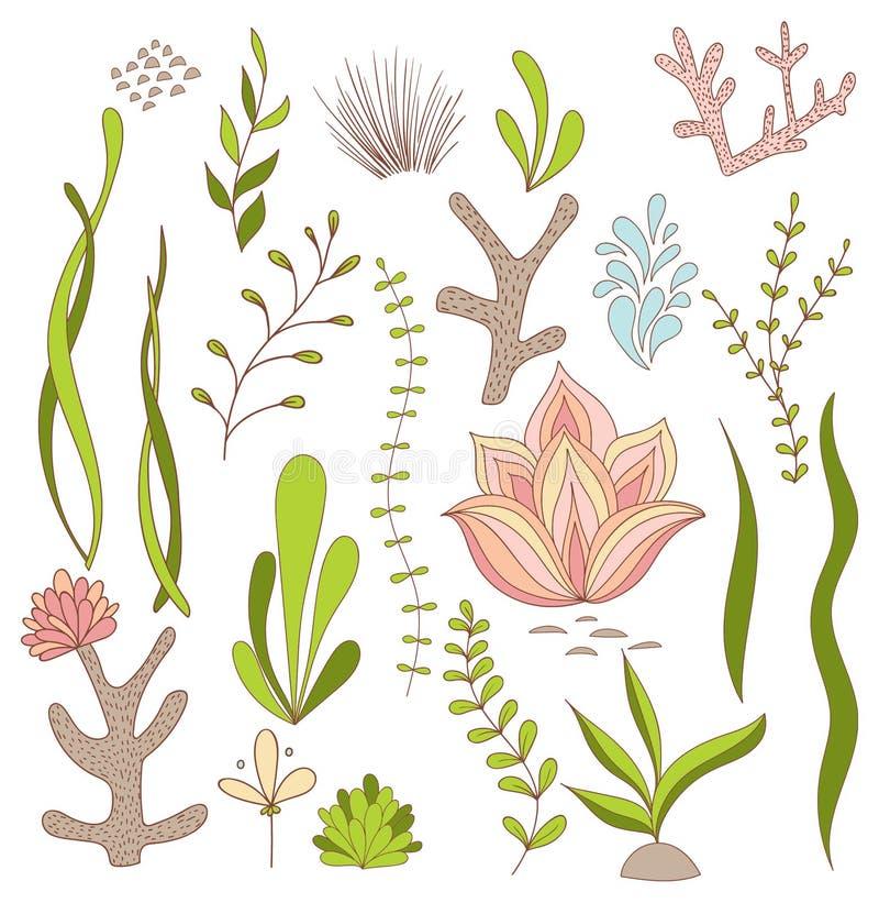 Grupo de plantas lunáticas subaquáticas - alga, coral, flores ilustração stock