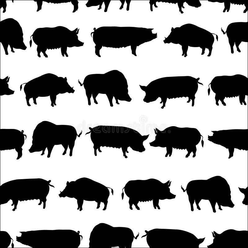 Grupo de porcos ilustração do vetor