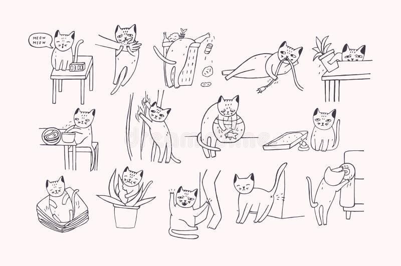 Grupo de problema com comportamento do gato O gatinho que mia, morde, riscos, sofá das marcas, sonos na roupa, vai ao toalete ilustração stock