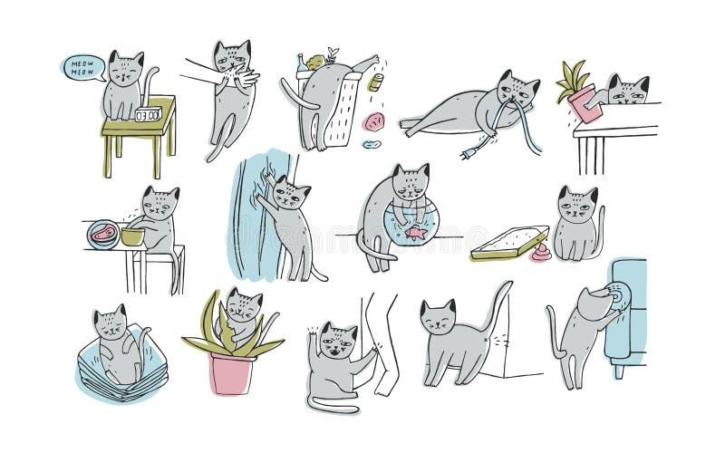Grupo de problema com comportamento do gato O gatinho que mia, morde, riscos, sofá das marcas, sonos na roupa, vai ao toalete ilustração do vetor