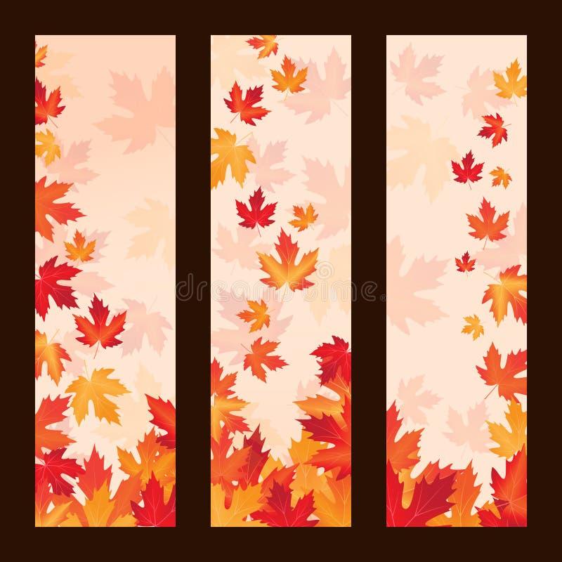 Grupo de quadros do vetor com folhas de bordo do outono ilustração do vetor