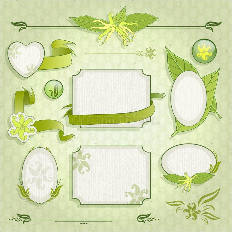 Download Grupo de quadros florais ilustração do vetor. Ilustração de decoração - 29831798