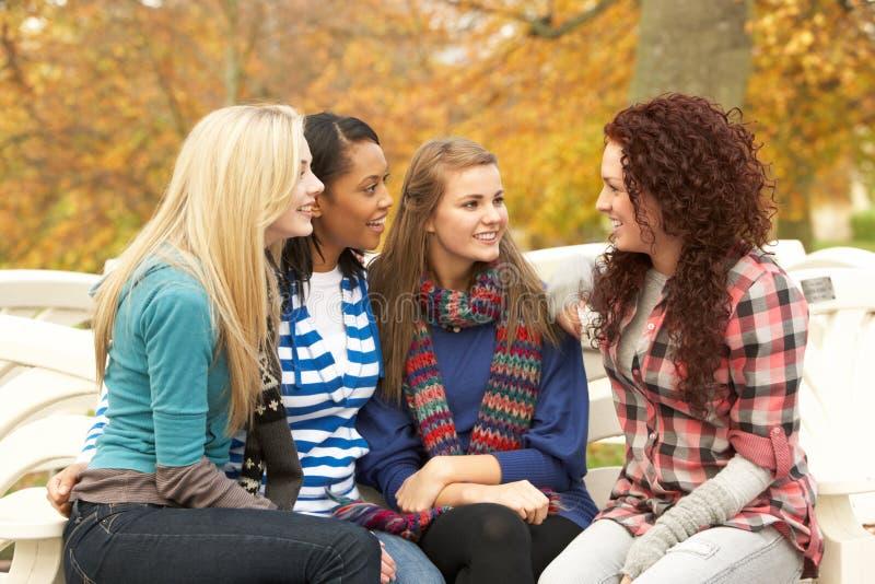 Grupo de quatro adolescentes que sentam-se e que conversam fotografia de stock