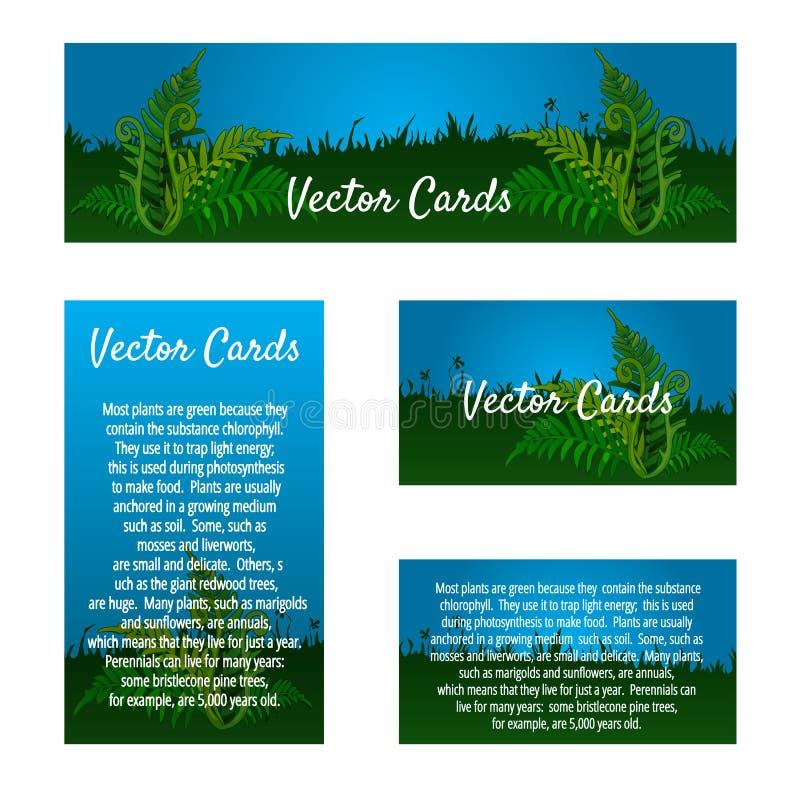 Grupo de quatro cartões com ornamento natural ilustração royalty free