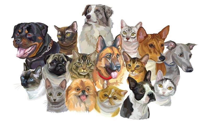 Grupo de raças dos cães e gato ilustração stock