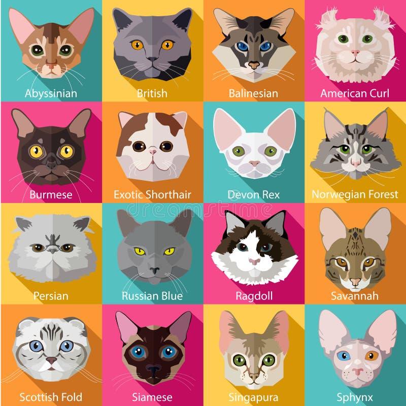 Grupo de raças populares lisas de ícones dos gatos ilustração stock