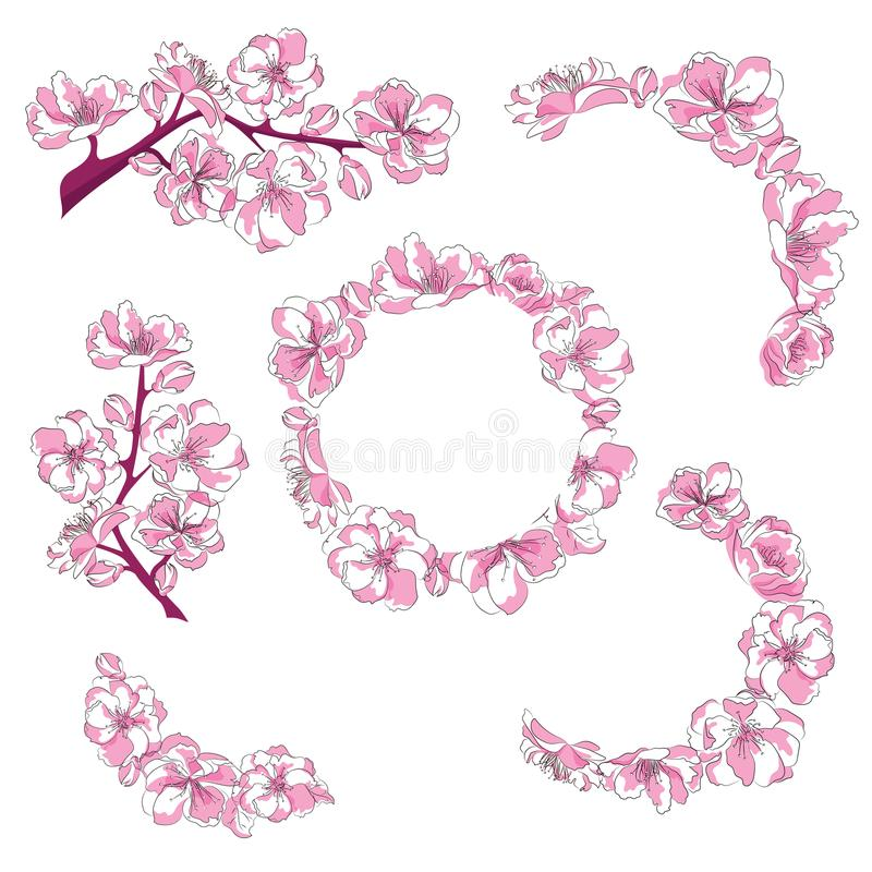 Grupo de ramos com flores de cerejeira A coleção de sakura cor-de-rosa floresce nos ramos Ilustração da mola japonesa ilustração royalty free