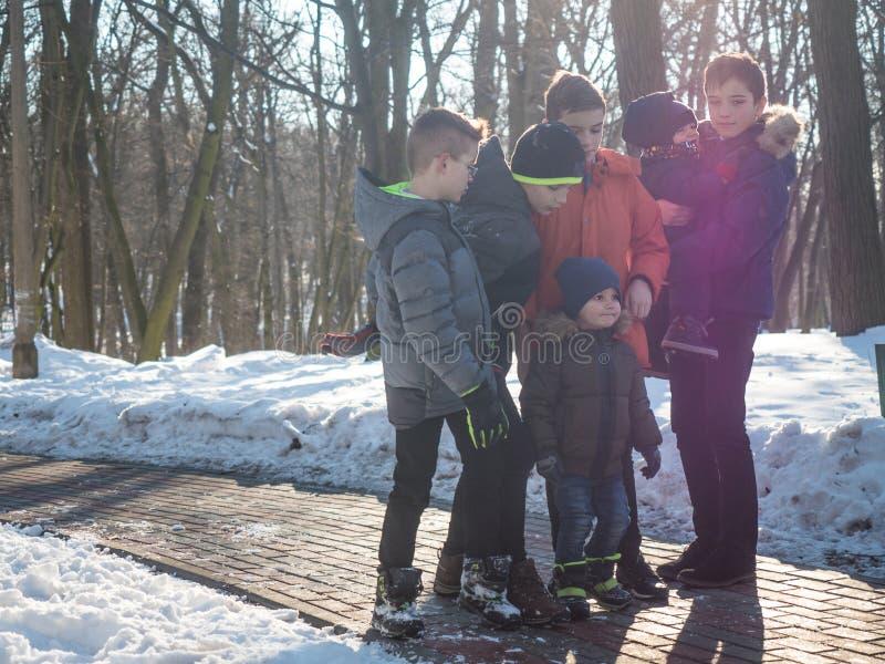 Grupo de rapazes pequenos no parque do inverno foto de stock royalty free