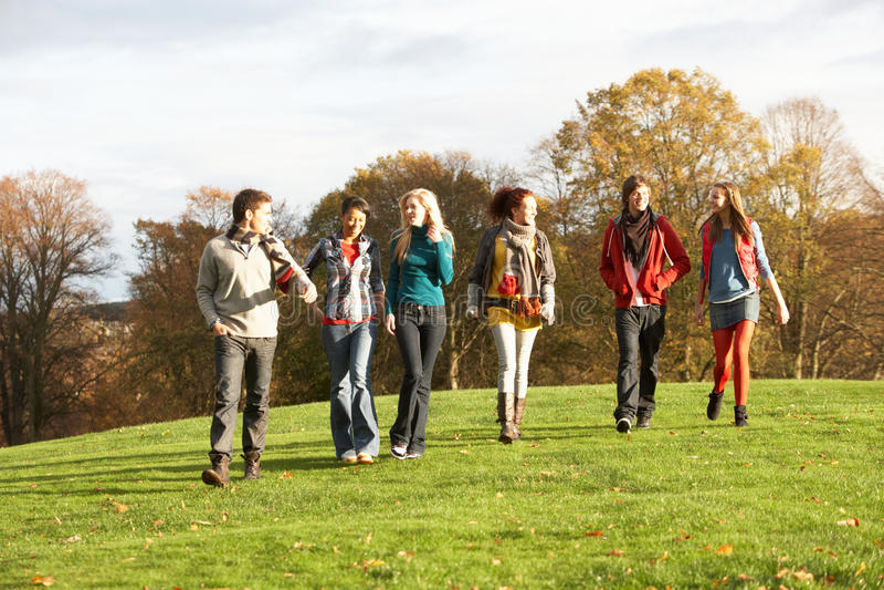 Grupo de recorrer adolescente de los amigos fotografía de archivo
