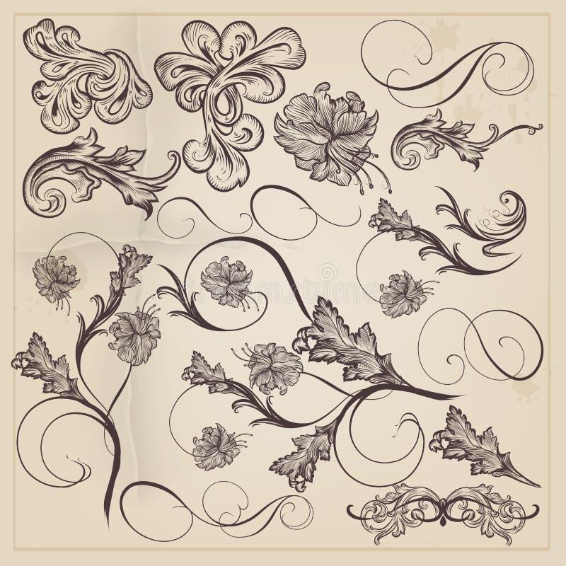 Grupo de redemoinhos decorativos caligráficos do vetor para o projeto ilustração stock