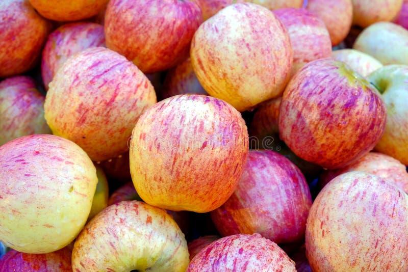 Grupo de rosa fresco de las manzanas imágenes de archivo libres de regalías