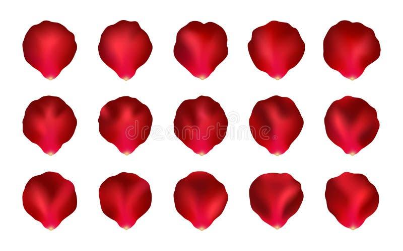 Grupo de Rose Petals vermelha, malha ilustração royalty free
