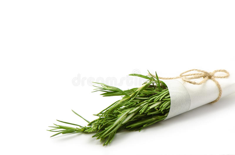 Grupo de Rosemary no fundo branco imagens de stock