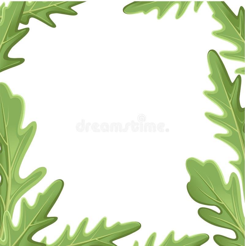 Grupo de rucola da rúcula, folhas frescas e esboços do verde da salada de foguete isolados sobre o fundo branco Ilustração desenh ilustração stock