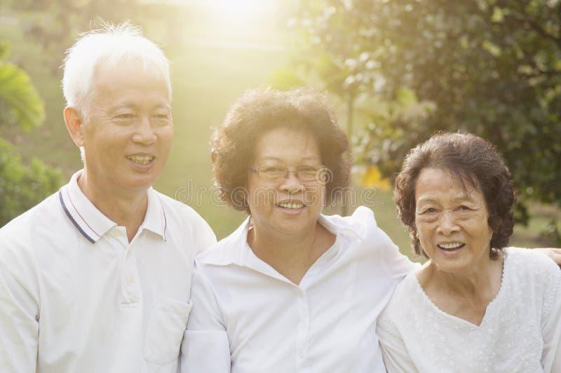 Grupo de sêniores asiáticos que comemoram a amizade fotografia de stock royalty free