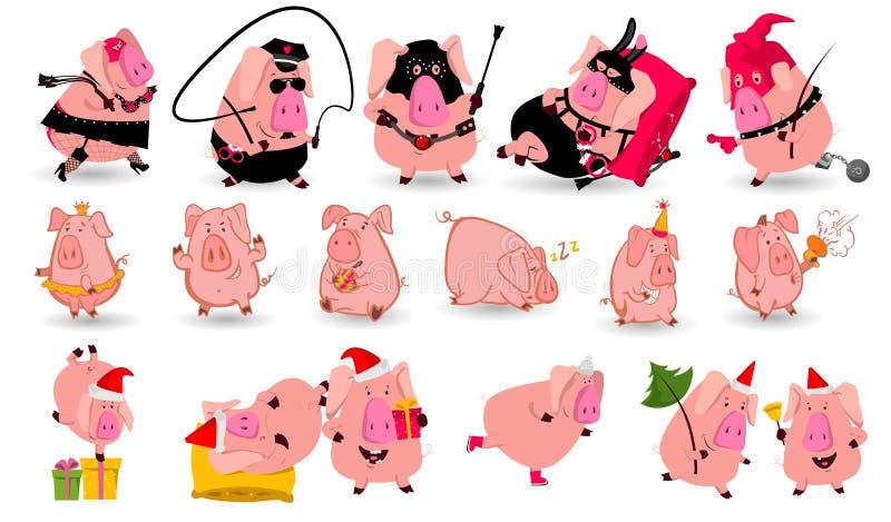 Grupo de símbolo chinês do porco de 2019 anos com emoções diferentes Ilustração isolada vetor Projeto criativo do ano novo ilustração do vetor