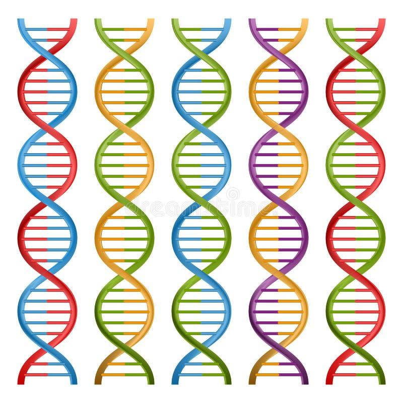 Grupo de símbolos do ADN para a ciência e a medicina ilustração stock