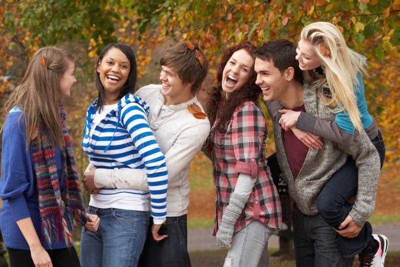 Grupo de seis amigos adolescentes que têm o divertimento imagens de stock royalty free