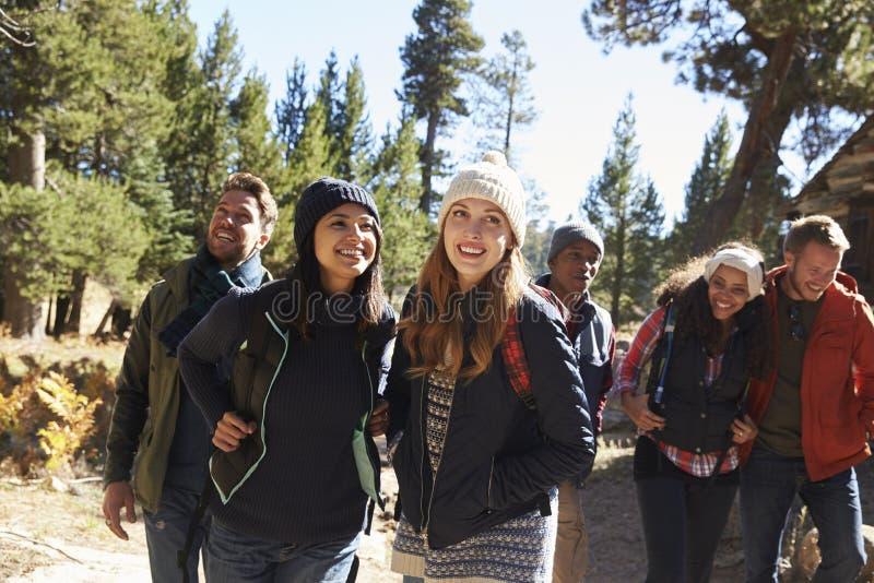 Grupo de seis amigos que caminan más allá de una cabaña de madera en un bosque fotos de archivo