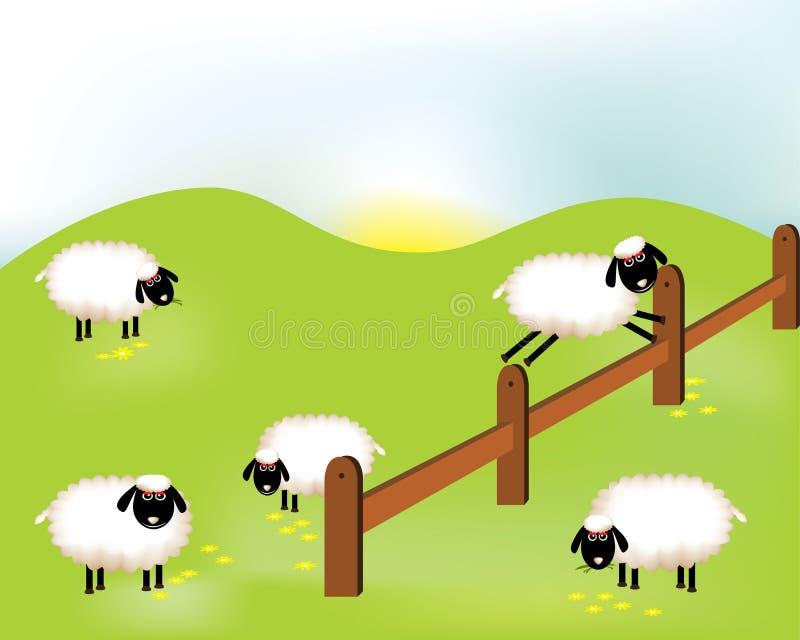 Grupo de sheeps ilustração do vetor