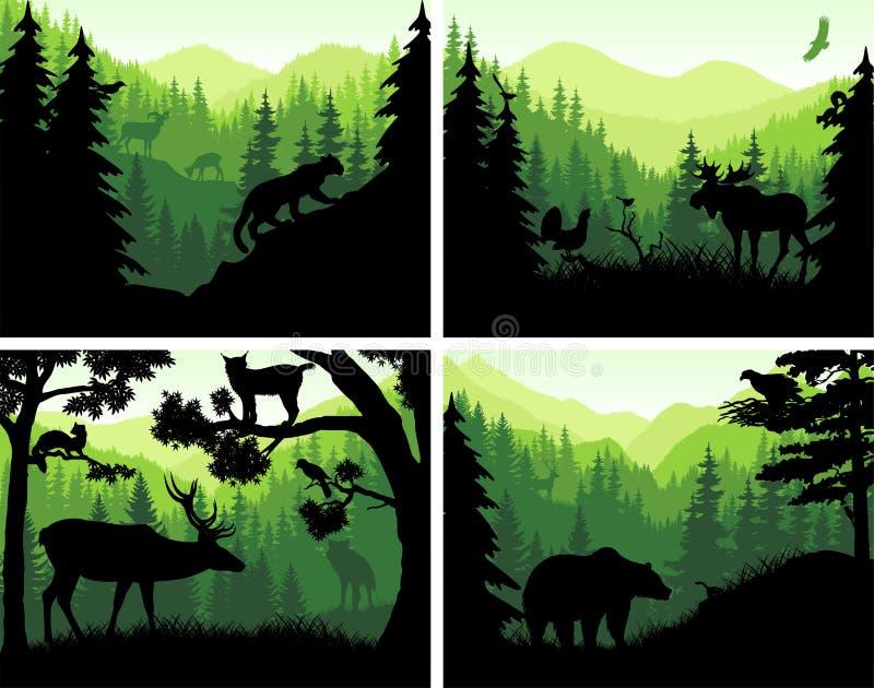 Grupo de silhuetas dos animais da floresta das montanhas do vetor em moldes do por do sol ilustração royalty free