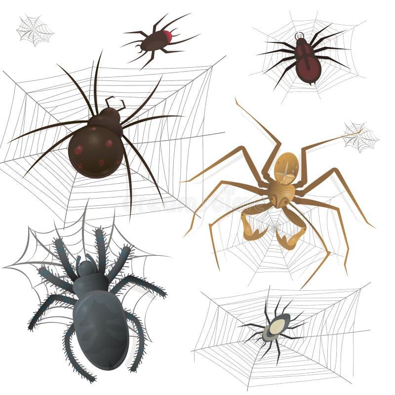 Grupo de spiderweb com aranhas Ilustração do vetor ilustração royalty free
