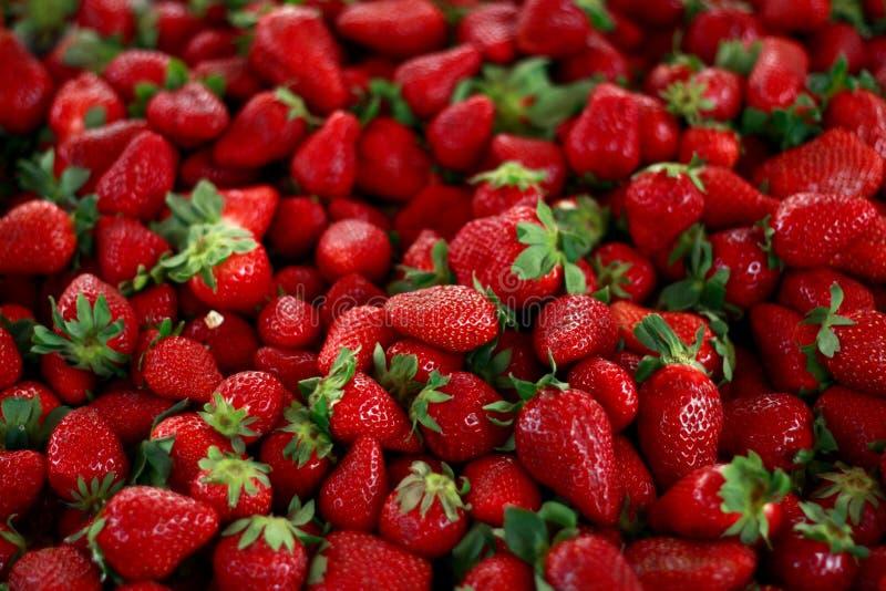 Grupo de strawberrys frescos no mercado para a venda imagens de stock royalty free