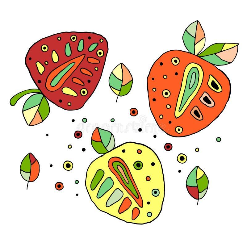 Grupo de suculento criançola tirado mão do vetor, frutos Morango infantil bonito, folhas, sementes, gotas Garatuja, esboço, estil ilustração stock