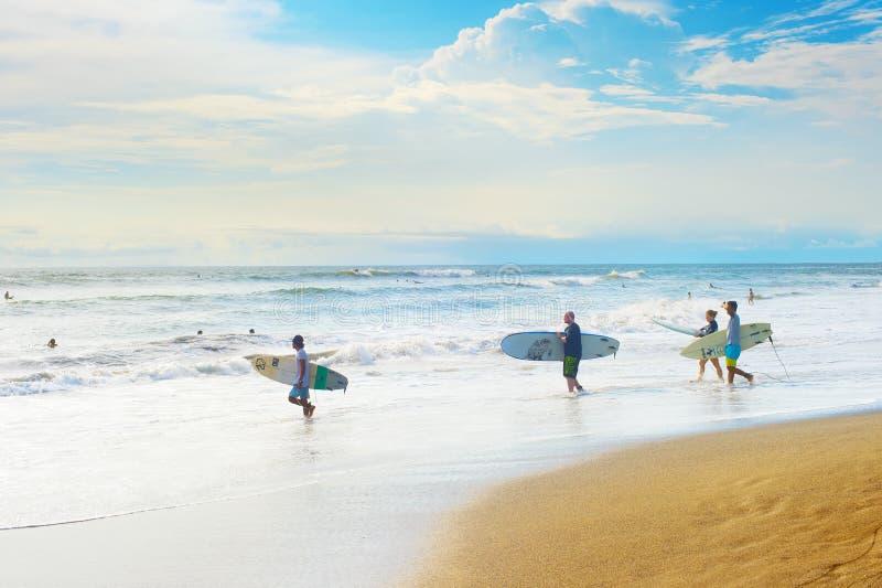 Grupo de surfistas, ilha de Bali imagens de stock royalty free