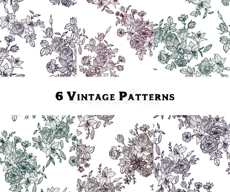 Grupo de testes padrões sem emenda florais do vetor do vintage ilustração royalty free