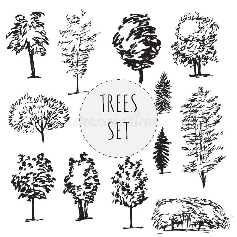Grupo de tipos diferentes árvores tiradas mão ilustração royalty free