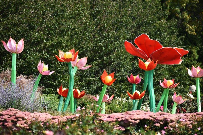 Grupo de tulipas imagens de stock