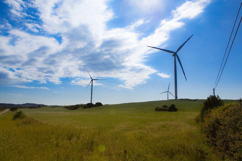Grupo de turbinas eólicas imagem de stock