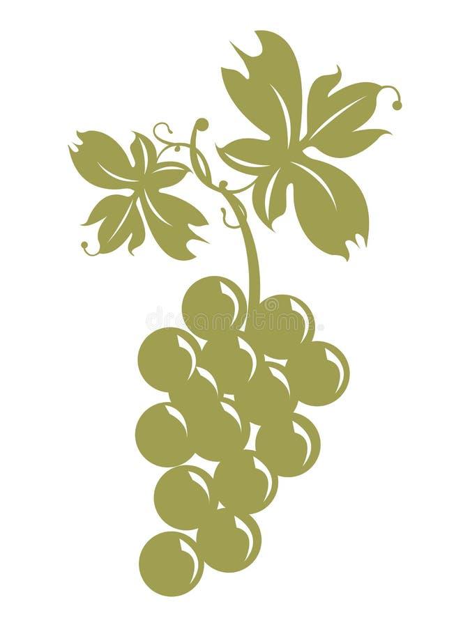 Grupo de uvas e de folhas ilustração royalty free