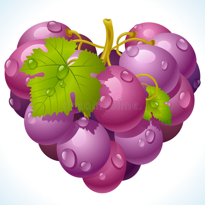 Grupo de uvas na forma do coração ilustração stock